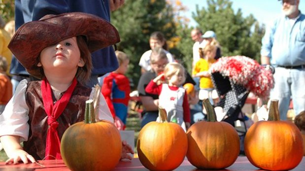 Can't Miss: Greater Green Bay Fall Festivals